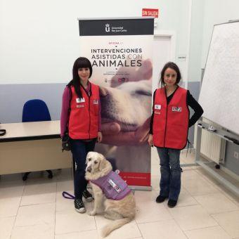 El equipo terapéutico designado por la Oficina de Intervención Asistida con Animales (OIAA), está formado por una psicóloga, una técnico en IAA y una perra debidamente seleccionada y entrenada para dar apoyo al equipo terapéutico en las sesiones.